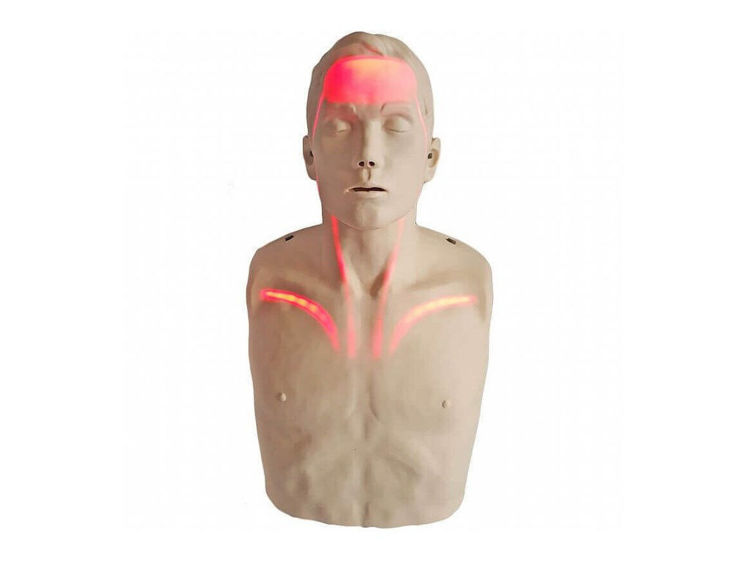 Brayden CPR Manikin with Red Illumination Lights